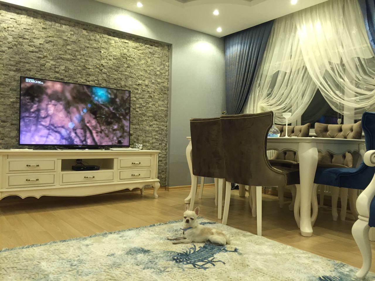 tv-arkası-taş- dekorasyon